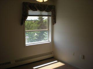 Photo 12: 405 17519 98A Avenue NW in Edmonton: Zone 20 Condo for sale : MLS®# E4163045