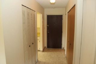 """Photo 14: 303 33400 BOURQUIN Place in Abbotsford: Central Abbotsford Condo for sale in """"Bakerview Place"""" : MLS®# R2385590"""