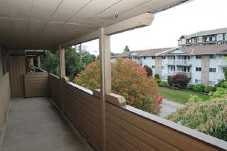 """Photo 12: 303 33400 BOURQUIN Place in Abbotsford: Central Abbotsford Condo for sale in """"Bakerview Place"""" : MLS®# R2385590"""