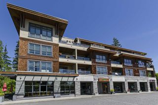 "Photo 1: 304 3732 MT SEYMOUR Parkway in North Vancouver: Indian River Condo for sale in ""Nature's Cove"" : MLS®# R2454697"