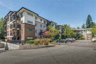 """Main Photo: 208 11665 HANEY Bypass in Maple Ridge: West Central Condo for sale in """"Haney's Landing"""" : MLS®# R2476648"""