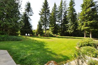 Photo 28: 13854 SPRATT Road in Mission: Durieu House for sale : MLS®# F1118373