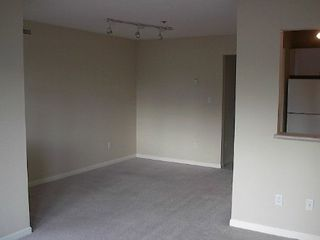 Photo 6: HUGE 1-BR IN KITSILANO!