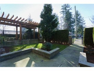 """Photo 20: 117 6628 120TH Street in Surrey: West Newton Condo for sale in """"THE SALUS"""" : MLS®# F1431111"""