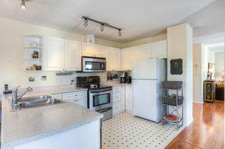 Photo 3: 11441 240 Street in Maple Ridge: Cottonwood MR House for sale : MLS®# R2005271