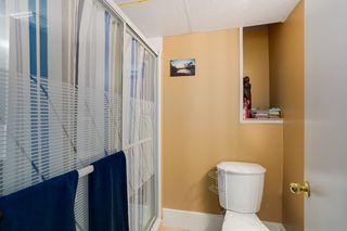 Photo 16: 785 52 Street in Delta: Tsawwassen Central House for sale (Tsawwassen)  : MLS®# R2038563