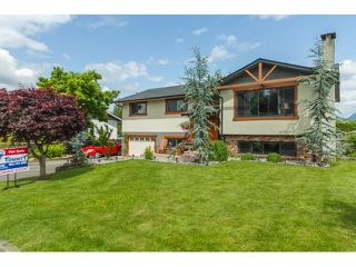 Photo 1: 22763 REID Avenue in Maple Ridge: East Central House for sale : MLS®# R2073034