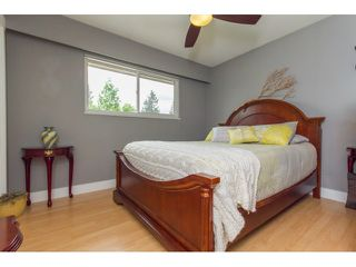 Photo 12: 22763 REID Avenue in Maple Ridge: East Central House for sale : MLS®# R2073034