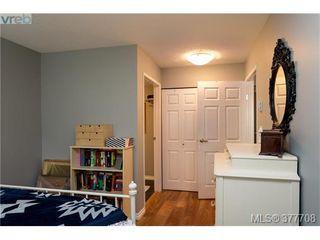 Photo 13: 110 2529 Wark St in VICTORIA: Vi Hillside Condo for sale (Victoria)  : MLS®# 758419