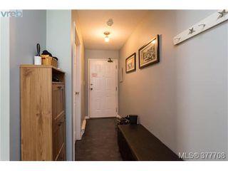 Photo 16: 110 2529 Wark St in VICTORIA: Vi Hillside Condo for sale (Victoria)  : MLS®# 758419