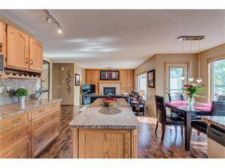 Photo 14: 85 SUNMEADOWS Crescent SE in Calgary: Sundance House for sale : MLS®# C4115750