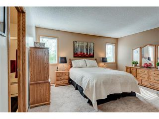 Photo 20: 85 SUNMEADOWS Crescent SE in Calgary: Sundance House for sale : MLS®# C4115750
