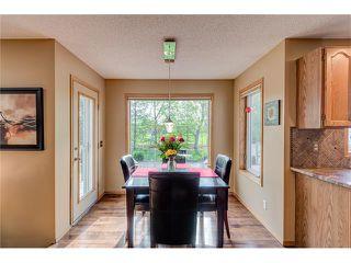 Photo 15: 85 SUNMEADOWS Crescent SE in Calgary: Sundance House for sale : MLS®# C4115750