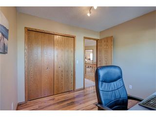 Photo 26: 85 SUNMEADOWS Crescent SE in Calgary: Sundance House for sale : MLS®# C4115750