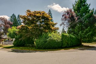 Photo 9: 12086 193A Street in Pitt Meadows: Central Meadows House for sale : MLS®# R2193215