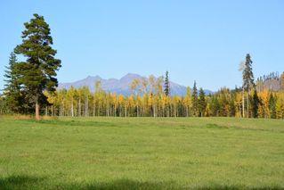 Photo 18: 15058 Kitseguecla Lake Road | Rural Smithers