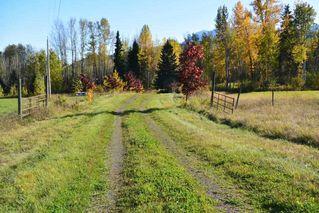 Photo 19: 15058 Kitseguecla Lake Road | Rural Smithers