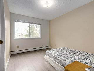 Photo 9: 303 7200 LINDSAY Road in Richmond: Granville Condo for sale : MLS®# R2248675
