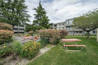 "Photo 15: 111 3451 SPRINGFIELD Drive in Richmond: Steveston North Condo for sale in ""Admiral Court"" : MLS®# R2275006"