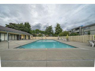 "Photo 12: 111 3451 SPRINGFIELD Drive in Richmond: Steveston North Condo for sale in ""Admiral Court"" : MLS®# R2275006"