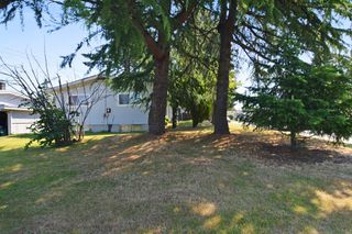 Photo 14: 32065 DORMICK Avenue in Abbotsford: Abbotsford West House for sale : MLS®# R2280732