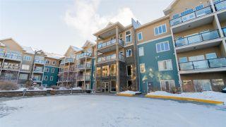 Photo 2: 247 10121 80 Avenue NW in Edmonton: Zone 17 Condo for sale : MLS®# E4143408