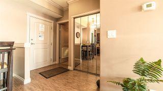 Photo 5: 247 10121 80 Avenue NW in Edmonton: Zone 17 Condo for sale : MLS®# E4143408