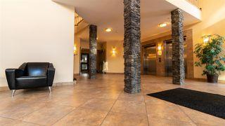 Photo 4: 247 10121 80 Avenue NW in Edmonton: Zone 17 Condo for sale : MLS®# E4143408