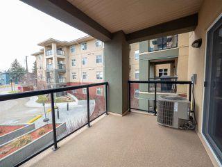 Photo 18: 214 7909 71 Street in Edmonton: Zone 17 Condo for sale : MLS®# E4151718