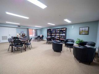 Photo 20: 214 7909 71 Street in Edmonton: Zone 17 Condo for sale : MLS®# E4151718