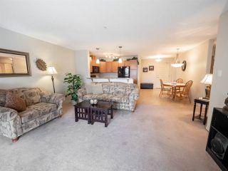 Photo 12: 214 7909 71 Street in Edmonton: Zone 17 Condo for sale : MLS®# E4151718