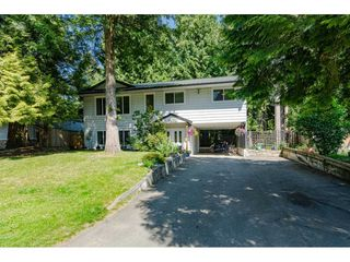"""Photo 1: 4532 200A Street in Langley: Langley City House for sale in """"Alice Brown school area"""" : MLS®# R2369514"""