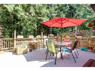 """Photo 19: 4532 200A Street in Langley: Langley City House for sale in """"Alice Brown school area"""" : MLS®# R2369514"""