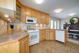 Photo 9: 4520 35 Avenue in Edmonton: Zone 29 House for sale : MLS®# E4162636