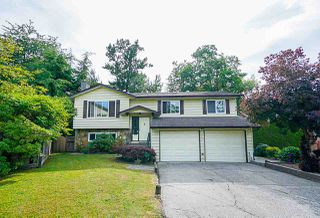 Main Photo: 7317 141 Street in Surrey: East Newton House for sale : MLS®# R2384719