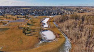 Photo 50: 23 GOVERNOR Place: Spruce Grove House for sale : MLS®# E4180384