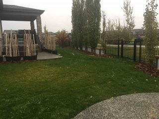 Photo 40: 23 GOVERNOR Place: Spruce Grove House for sale : MLS®# E4180384