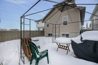 Photo 32: 3008 32 Avenue in Edmonton: Zone 30 House for sale : MLS®# E4187788