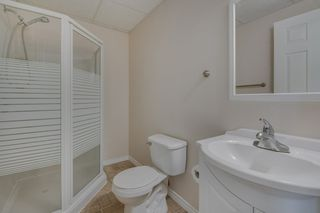 Photo 26: 3008 32 Avenue in Edmonton: Zone 30 House for sale : MLS®# E4187788