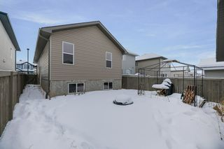 Photo 31: 3008 32 Avenue in Edmonton: Zone 30 House for sale : MLS®# E4187788