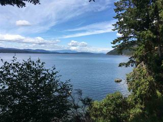 Photo 38: 477 LETOUR Road: Mayne Island House for sale (Islands-Van. & Gulf)  : MLS®# R2475713