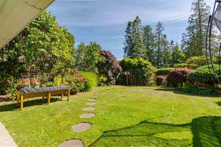 Photo 37: 13419 MARINE Drive in Surrey: Crescent Bch Ocean Pk. House for sale (South Surrey White Rock)  : MLS®# R2492166