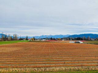 Photo 12: 41193 TAYLOR Road in Mission: Dewdney Deroche Land for sale : MLS®# R2506788