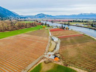 Photo 13: 41193 TAYLOR Road in Mission: Dewdney Deroche Land for sale : MLS®# R2506788