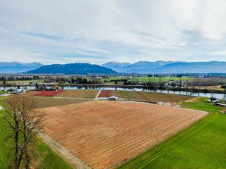 Photo 9: 41193 TAYLOR Road in Mission: Dewdney Deroche Land for sale : MLS®# R2506788