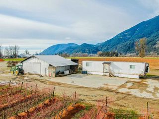 Photo 3: 41193 TAYLOR Road in Mission: Dewdney Deroche Land for sale : MLS®# R2506788