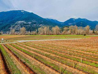 Photo 5: 41193 TAYLOR Road in Mission: Dewdney Deroche Land for sale : MLS®# R2506788