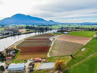Photo 6: 41193 TAYLOR Road in Mission: Dewdney Deroche Land for sale : MLS®# R2506788