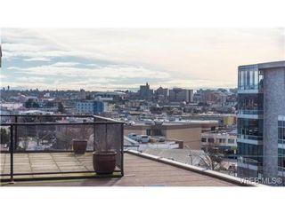 Photo 10: 306 356 E Gorge Rd in VICTORIA: Vi Burnside Condo Apartment for sale (Victoria)  : MLS®# 693005