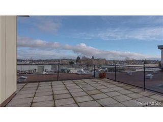 Photo 11: 306 356 E Gorge Rd in VICTORIA: Vi Burnside Condo Apartment for sale (Victoria)  : MLS®# 693005